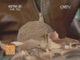 [农广天地]泉州提线木偶(20140711)