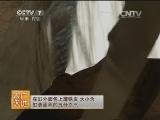 [农广天地]吊桥缸炉烧饼(20140814)