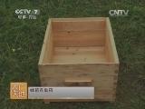 养蜂技术农广天地,新疆黑蜂养殖技术