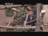 阴宗杰棉花加工致富经,从收废木头开始的财富(20141121)