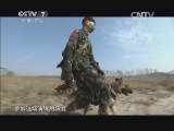 《军事科技》 20150207 特战神犬