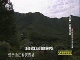"""《生活早参考》 20150722 """"爱拼才会赢""""系列节目 深山里的千万宝藏"""