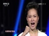 [胜利之歌-纪念中国人民抗战胜利70周年音乐会]歌曲《长城谣》 演唱:雷佳