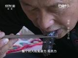 [科技之光]海参 您吃对了吗