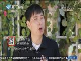 影视里的厦门 闽南通 2017.01.01 - 厦门卫视 00:24:23