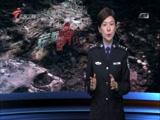 《南粤警视》 20170115 荒野白骨(上)