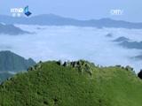 [航拍中国]30秒宣传片