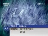 """《天网》 20170216 床下有""""鬼""""海报"""
