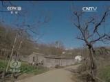《焦点访谈》 20170301 乡土中国农村系列调查:孤独的守望