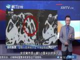 新闻斗阵讲 2017.3.3 - 厦门卫视 00:24:22