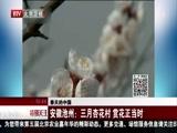 [特别关注-北京]春天的中国