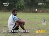 [远方的家] 一带一路(122)斯里兰卡 感受斯里兰卡板球运动