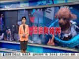 特区新闻广场 2017.4.23 - 厦门电视台 00:21:51
