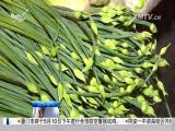 午间新闻广场 2017.5.6 - 厦门电视台 00:21:22