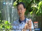 重走古官道 闽南通 2017.05.07 - 厦门卫视 00:24:31
