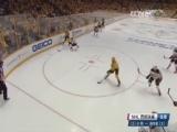 [NHL]西部决赛第6场:小鸭VS掠夺者 第一节