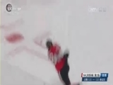 [NHL]东部决赛第6场:企鹅VS参议员 第三节