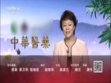 端午寻艾 中华医药 2017.05.29 - 中央电视台 00:41:35