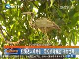 新闻斗阵讲 2017.7.5 - 厦门卫视 00:24:37