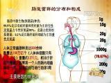 肠道微生态 名医大讲堂 2017.07.20 - 厦门电视台 00:28:26