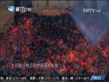 人间烟火 闽南通 2017.07.22 - 厦门卫视 00:24:48