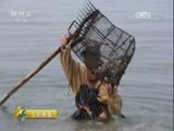 20170801 生态中国系列(沿海行)——海岛慢生活 成就新财富