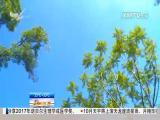 午间新闻广场 2017.10.03 - 厦门电视台 00:20:21