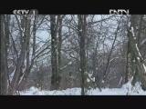 《魅力纪录》 20120815 东亚生态大勘探 第三集