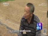 《小康路上》(8)新农技 摘穷帽 走遍中国 2017.10.26 - 中央电视台 00:25:50
