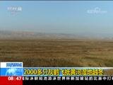 [朝闻天下]陕西韩城 2000多只灰鹤飞抵黄河湿地越冬