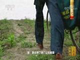 《中国影像方志》 第28集 江苏高邮篇 00:39:47