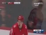 [NHL]常规赛12月14日:棕熊3-2红翼 比赛集锦