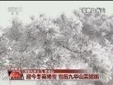"""[视频]北方低温持续 南方多地气温""""跳水"""""""