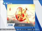 杨九妹取金刀 斗阵来看戏 2018.01.26 - 厦门卫视 00:49:09