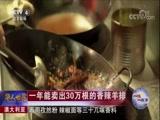 一味一故事 澳大利亚 一年能卖出30万根的香辣羊排 华人世界 2018.01.31 - 中央电视台 00:02:34