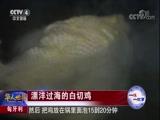 匈牙利 漂洋过海的白切鸡 华人世界 2018.02.17 - 中央电视台 00:02:14