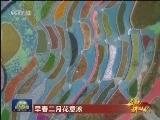 [视频]【启航新时代】早春二月花意浓