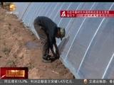 """[甘肃新闻]古浪:""""挪穷窝""""移民走上致富路"""