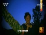 《中国影像方志》 第50集 黑龙江嘉荫篇 00:39:19
