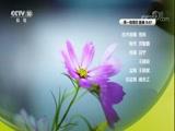 《聚力支撑》第五集 大科学装置(下) 00:24:14