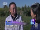 《走遍中国》 20180314 5集系列片《森林城市》(3) 废地重生路