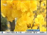 厦视直播室 2018.3.16 - 厦门电视台 00:47:36