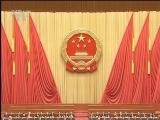 [视频]十三届全国人大一次会议选举产生新一届国家领导人 习近平全票当选国家主席中央军委主席