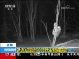 [新闻直播间]吉林 延边发现近50只野生紫貂踪迹