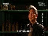 成都老官山汉墓(上) 00:36:57