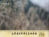 《国史通鉴》3 大业盛世 百家讲坛 2018.03.31 - 中央电视台 00:36:27