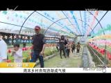 炫彩生活 2018.04.20 - 厦门电视台 00:06:10