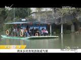 炫彩生活 2018.05.11 - 厦门电视台 00:05:35