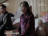 《汶川十年·我们的故事》第四集 林兴聪的全家福 00:24:02