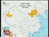 [视频]强降雨袭击川渝等地